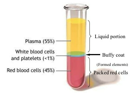 test tube showing blood plasma